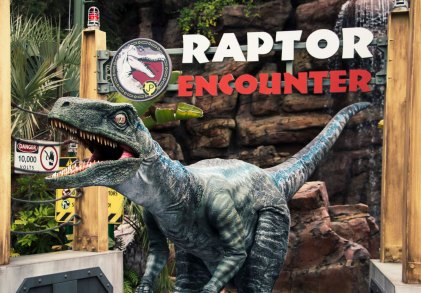 Blue at Raptor Encounter - Universal Studios